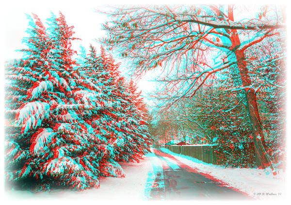 Anaglyph Photograph - Snowy Lane - Use Red/cyan Filtered 3d Glasses by Brian Wallace