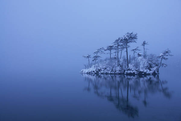 Island Photograph - Snowy Morning by Ikuo Iga