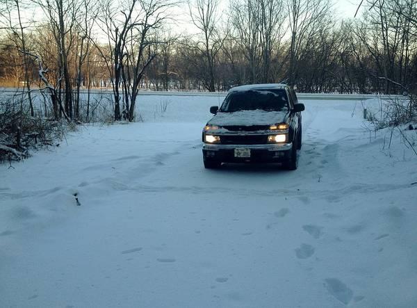Photograph - Snowy Morning by Tony Mathews
