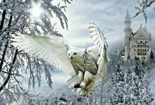 Mixed Media - Snowy Owl by Morag Bates