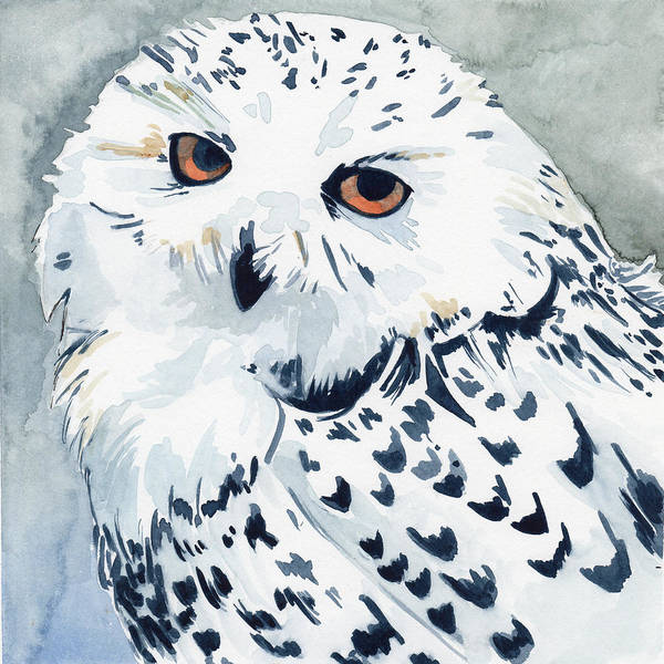 Painting - Snowy Owl by Sean Parnell