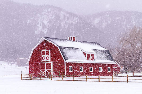 Photograph - Snowy Red Barn by Teri Virbickis