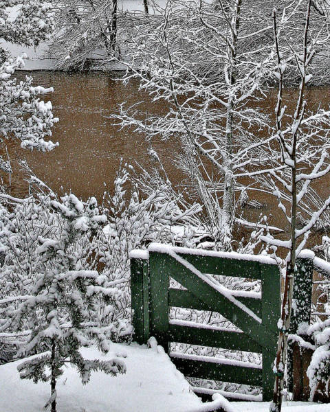 Photograph - Snowy River Gate by Matalyn Gardner