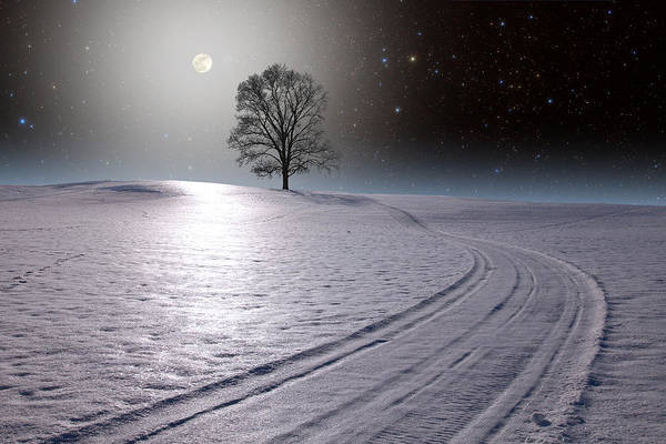 Photograph - Snowy Road by Larry Landolfi