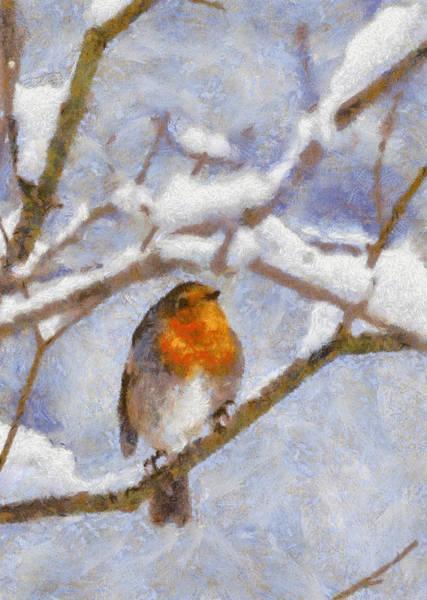 Digital Art - Snowy Robin by Charmaine Zoe