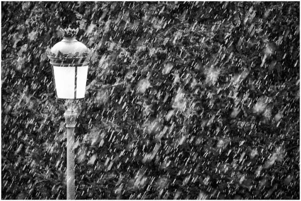 Photograph - Snowy Salamanca by Pablo Lopez