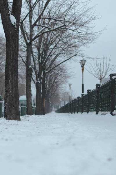Vertical Perspective Photograph - Snowy Sidewalk by Andrei Spirache