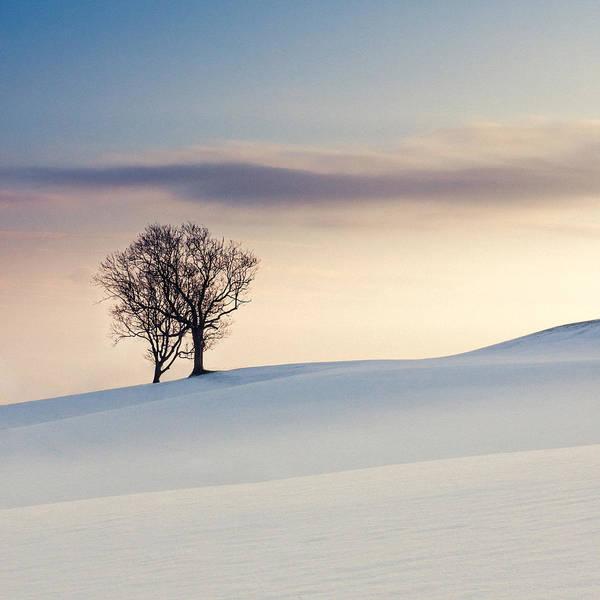 Nottinghamshire Photograph - Drifts by Chris Dale