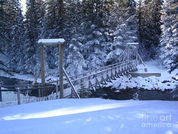Photograph - Snowy Walking Bridge by Vivian Martin
