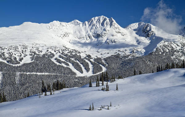 Photograph - Snowy Whistler Blackcomb by Pierre Leclerc Photography
