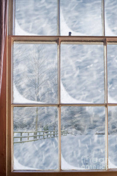 Window Pane Photograph - Snowy Window by Amanda Elwell