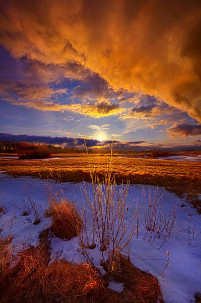 Photograph - So Many Times Before by Phil Koch