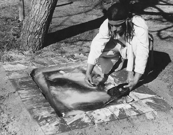 Photograph - Soaking A Bear Hide by Underwood Archives Onia