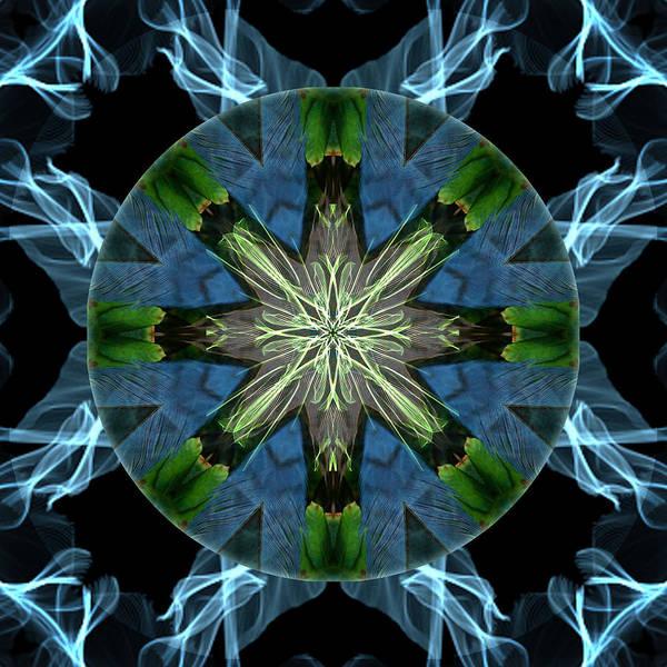 Mixed Media - Soaring Spirit by Alicia Kent