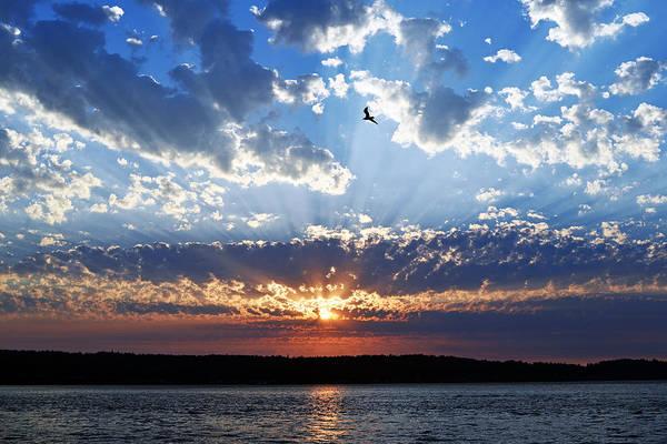 Soaring Sunset Art Print