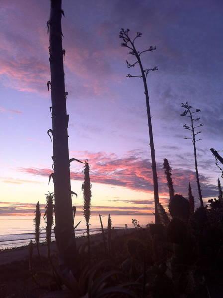 Photograph - Socal Sunset by Paul Carter