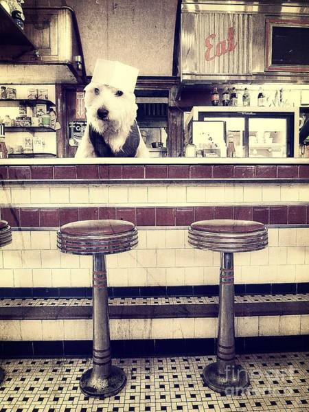 Diner Wall Art - Photograph - Soda Jerk by Edward Fielding