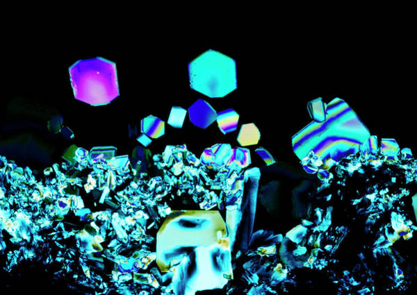 Compound Photograph - Sodium Tetraborate Crystals by Sidney Moulds/science Photo Library
