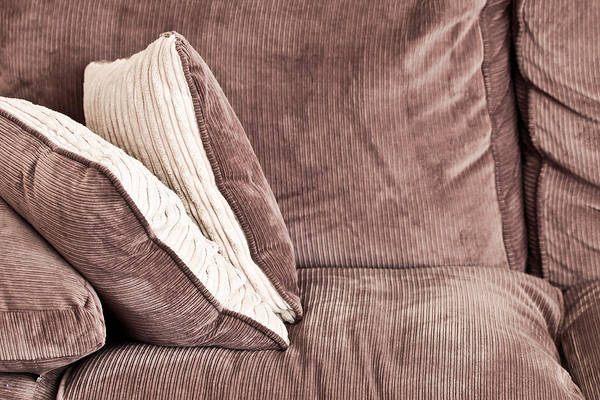 Comfort Photograph - Sofa Cushions by Tom Gowanlock