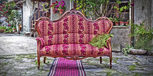 Photograph - Sofa With Fern by Roberto Pagani