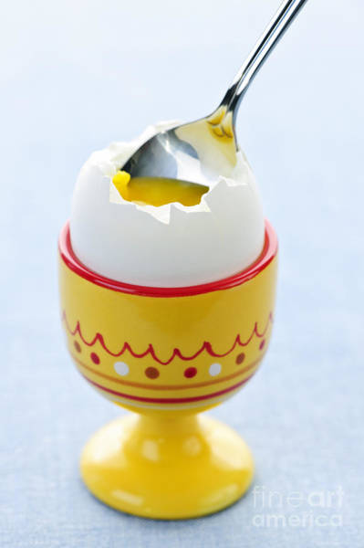 Egg Shell Photograph - Soft Boiled Egg In Cup by Elena Elisseeva