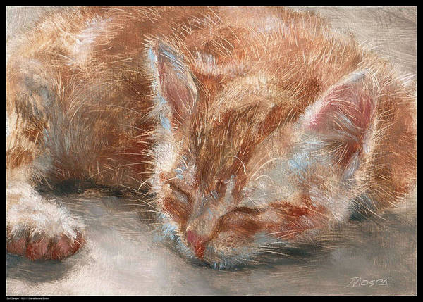 Orange Tabby Drawing - Soft Sleeper by Diana Moses