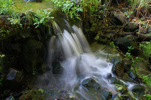 Photograph - Soft Water Whispers Softly To Me by Ben Upham III