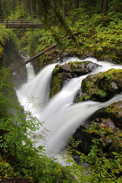 Triple Falls Photograph - Sol Duc Falls by David Andersen
