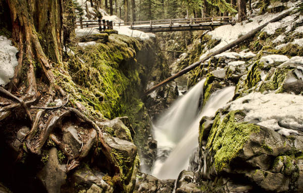 Photograph - Sol Duc Falls by Heather Applegate