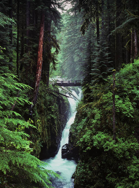 Wall Art - Photograph - Sol Duc Falls Plunges Down The Cliffs by Robert L. Potts