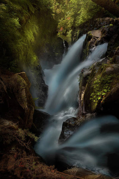 Wall Art - Photograph - Sol Duc by Louise Yu
