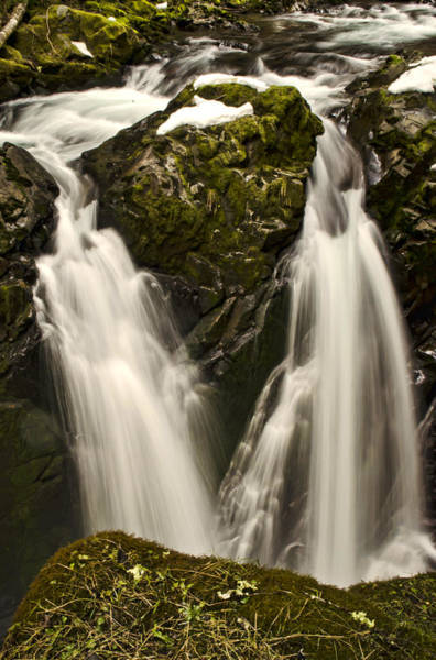 Photograph - Sol Duc River Cascade by Heather Applegate