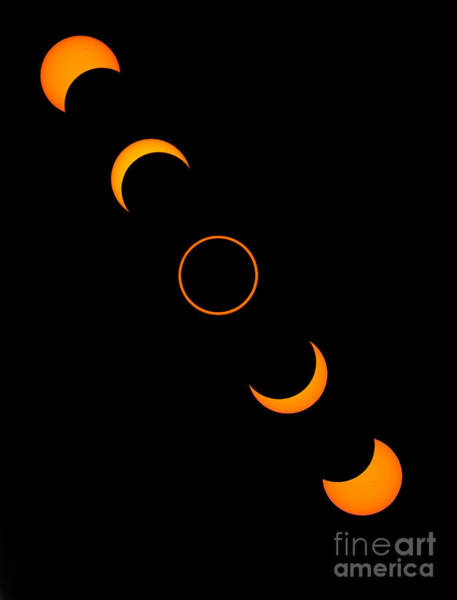 Photograph - Solar Annular Eclipse by Francois Gohier