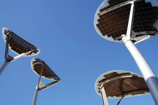 Lighting Equipment Photograph - Solar Mallee Trees by Chris Martin-bahr/science Photo Library