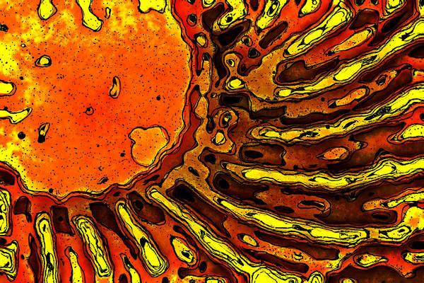 Wall Art - Digital Art - Solar Storm by David G Paul