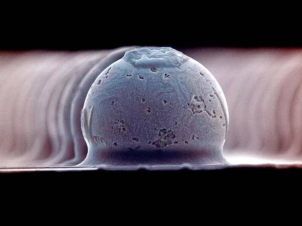 Bump Wall Art - Photograph - Solder Bumps by Colin Cuthbert/science Photo Library