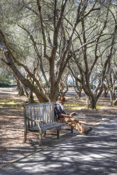 Filoli Photograph - Solitaire Reading by Diego Re