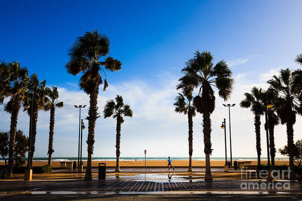 Photograph - Solitary Jogger On The Promenade Of Valencia In The Winter Sunsh by Peter Noyce