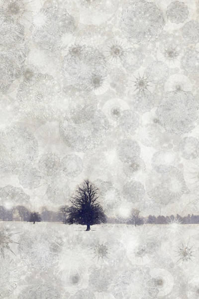 Remote Digital Art - Solitary Tree Caught Out In The Winter by Andrew Bret Wallis