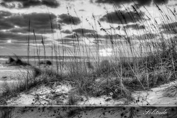 Wall Art - Photograph - Solitude 2 by Gary Yost