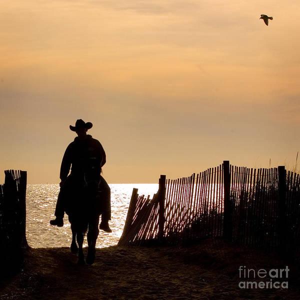 Photograph - Solitude by Carol Lynn Coronios