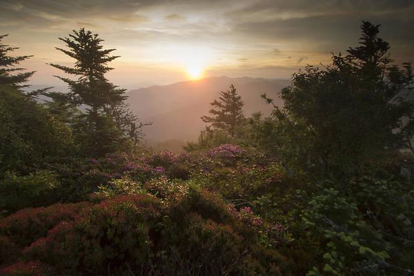 Photograph - Solitude by Doug McPherson