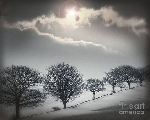 Solitude Of Coldness Art Print
