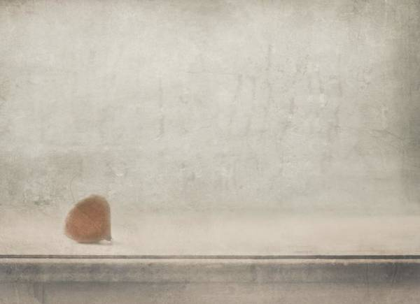 Wall Art - Photograph - Solitude Stands By The Window by Delphine Devos