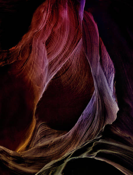 Antelope Photograph - Solo Journey In Earth's Womb (1) by Yvette Depaepe