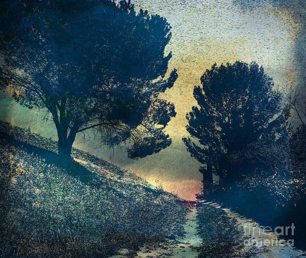 Digital Effect Photograph - Somber Passage by Peter Awax