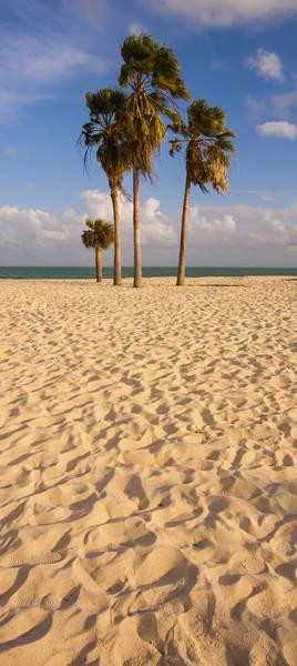 Photograph - Sombrero Beach by Adam Romanowicz