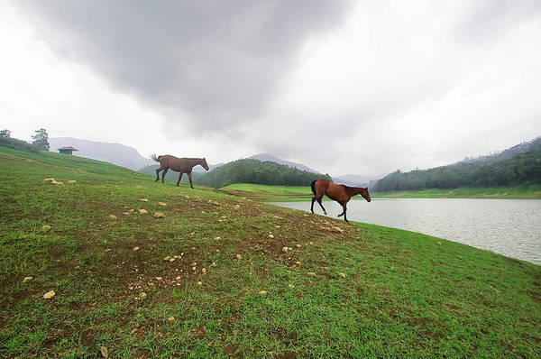 Kerala Photograph - Some Powerful Dreams by Vinod Kumar Photography
