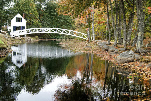 Photograph - Somesville Bridge In Acadia  by David Birchall