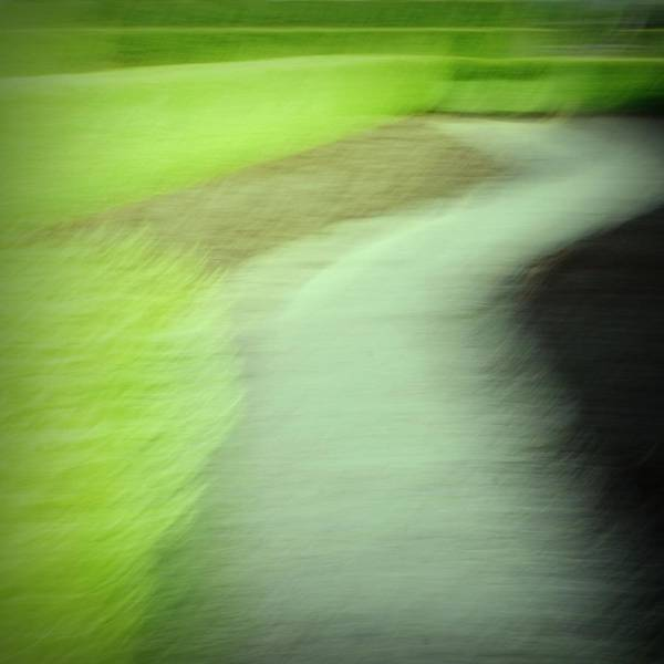 Photograph - Green Hedge Abstract by Patricia Strand